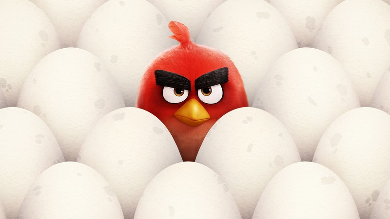 Фотообои: Angry Birds Red